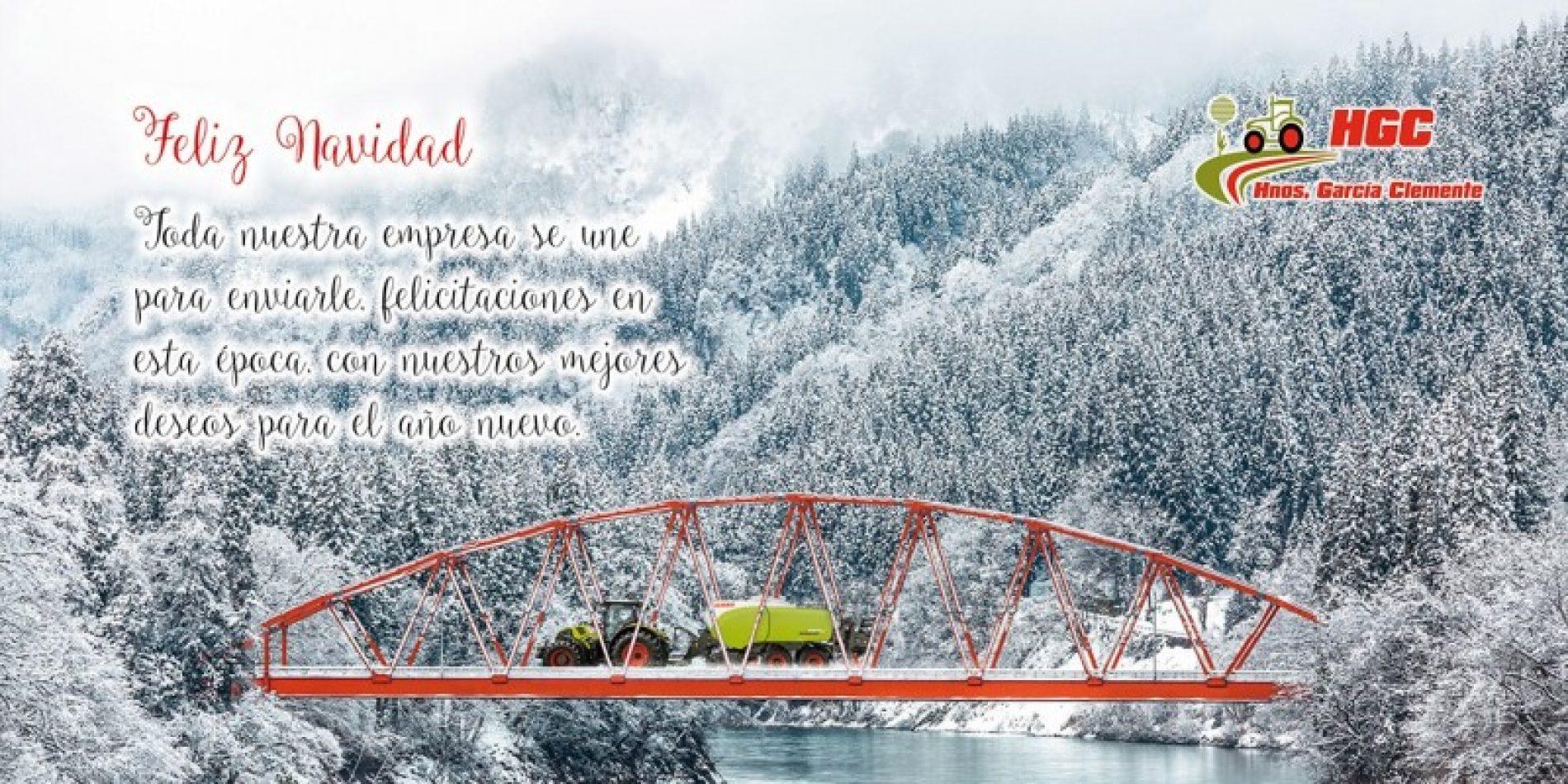 Felices Fiestas y Prospero Año 2019